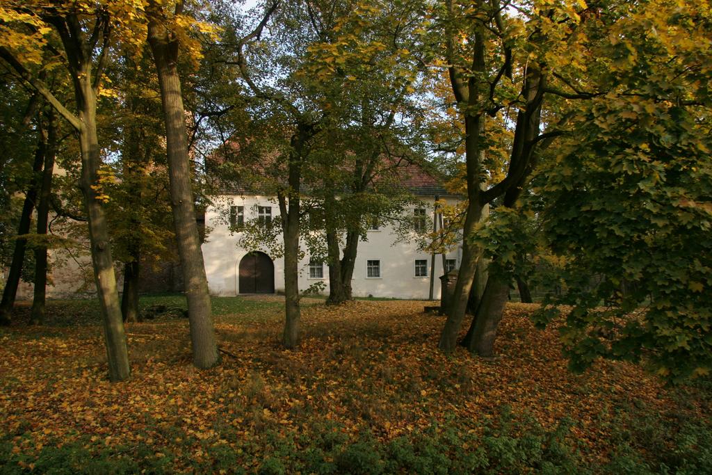 Zamek w Karłowicach 2.jpeg