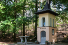 """Kapliczka w Dąbrówce Łubniańskiej """"Studzionka"""""""